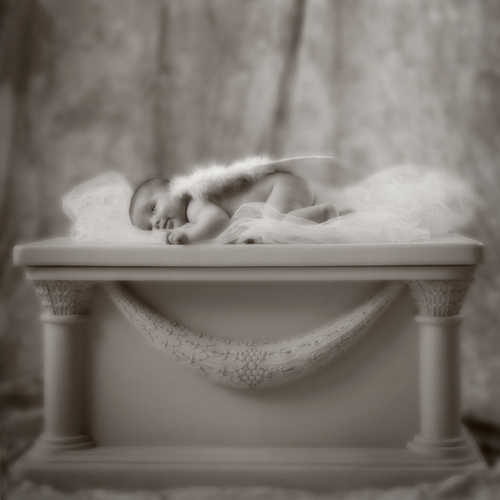 babyportrait03